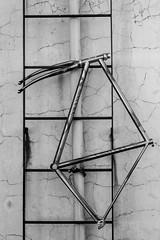 Cavaleracalavera (caro.lagosc) Tags: columbus cavalera bicicleta bike