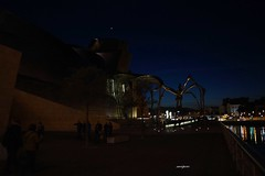 A view on the Guggenheim Bilbao at night (with Maman) (sacipere) Tags: bilbao guggenheim spain espanha maman spider aranha spinne