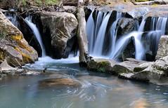 """Bomarzo VT -  It - """"Torrente Castello"""" (Lucchese Fabrizio) Tags: bomarzo cascate acqua"""