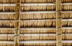 Dried grass on roof top of the cottage house (phuong.sg@gmail.com) Tags: aged ancient architecture background bamboo branches brown cabin cottage cover decoration design detail dried dry exotic exterior foliage grass hay haystack house hut leaf material messy native natural nature old ornament overlap pattern primitive protection reed roof roofing rough shelter shingle straw striped structure texture thatch wood
