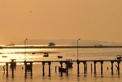 píer no pôr-do-sol (Ruby Ferreira ®) Tags: pôrdosol sunset silhuetas silhouettes bird boats pássaro barcos bay baíadaguanabara pier heron garças píer lamp