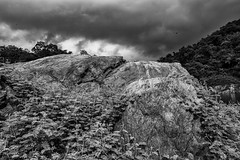 Gathering Storm... (mehtasunil) Tags: sky forest mountains rockymountains clouds rocks kerala keralatourism storm gatheringstorm track nationalpark trissur godsowncountry leicalens leicaq leicaimages leicacamera leicaforum leicaindia chimmonydam chimmonywildlifesanctuary redmatrix skancheli