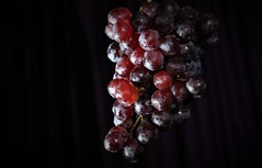 Grapes -  Not Like A Flat Image But As Real As It Is! (LEOBA Puthenthope - New York) Tags: grapes berry vitis anthocyanins puthenthope madurai trivandrumkerala tourism nature 3deffect perfectlighting awardwinningphotograph