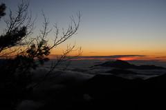 夕陽 Sunset|合歡山 Hehuanshan (里卡豆) Tags: olympus penf 25mm f12 pro 2512pro 山 mountain 高山 合歡山 hehuanshan 雲海 dusk sunset 夕陽 日落