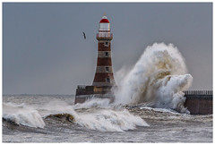 Stormy (malcbawn) Tags: winter lighthouse waves sunderland landscape northsea stormysea pier photography storm outdoors seascape rough sea northwind malcbawnphotography