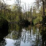 Blick von der Stufenbrücke im Berliner Tiergarten (3) thumbnail