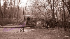 A Trestle in Spring (a2roland) Tags: normanzeba2rolandyahoocoma2roland spring trestle nj new jersey photography pic picture photo landscape nature overpass bridge train locomotive steam engine pass filiage folliage winter seasons blossom leaves sepia orange glow diffusion fog misty woods trees branches dried dry twig twigs ground road view angle persepective fence railing guardrail guard single exposure lens camera focus aperture iso noise grain norm zeb natural nikon zoom 300mm