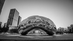 The bean (selo0901) Tags: blackwhite blackandwhite snow sunrise chicago cloudgate thebean