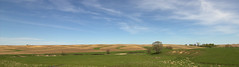 Countryside (Kyle-W) Tags: 1116mm blue canon clouds countryside field green grrass landscape pasture sky t3i tokina