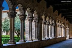 DSC6765 Claustro del Monasterio de Santa María la Real de Nieva, finales del siglo XIV y principios del siglo XV, (Segovia) (Ramón Muñoz - ARTE) Tags: monasterio de santa maría la real nieva claustro claustros