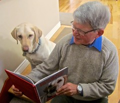 Story time for Kona the Guide Dog (BC Gov Photos) Tags: bcgovernment britishcolumbia bc technologywork neilsquiresociety accessibility accessibility2024 peoplewithdisabilities employment paulhorgen office comox