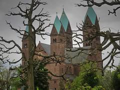 Erlöserkirche Bad Homburg (nordelch61) Tags: badhomburg schlosgarten blumen blüten baum bäume libanonzeder tulpen frühling hessen