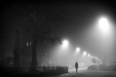 Kildevældsgade, Copenhagen (JR_Photos) Tags: kildevældsgade københavn østerbro copenhagen fog rain weather spring winter denmark danmark danish dansk black white bw monochrome city night light lights shadow shadows person people self slow shutterspeed shutter nikon d7100 35mm mood moody tree trees street