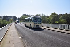 `A Bristol MW6G, Reg 7017 HK, owned by Ensign Bus Co, seen here on the Causeway, at Tattingstone Reservoir, Suffolk. Ipswich Bus Running Day. 09 04 2017 (pnb511) Tags: running day operating road ipswichtransportmuseum ipswichcorporationtransport suffolk bus water bridge causeway 7017hk bristol
