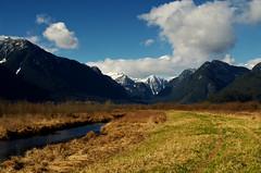 Pitt Marsh (Kristian Francke) Tags: landscape mountain mountains outdoors march winter 2017 pitt marsh bc canada british columbia nature natural