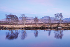 _DSC0576 (SFTPhotography) Tags: lochba rannochmoor scotland reflections reflection bluehour pink pinkclouds sunset nikond810