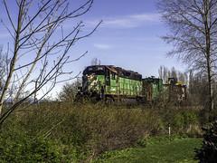 BNSF special (Tony Tomlin) Tags: crescentbeach bc locomotives diesellocomotives bnsf railroad