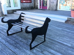 Cape Cod ~ awesome Lab bench (karma (Karen)) Tags: capecod massachusettes decks steps doors benches dogart labs hbm iphone topf25