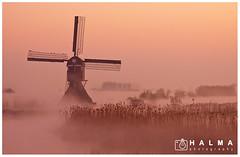 Windmill at sunrise (windmills, rowing boats and more) Tags: halma landschap landscape molen windmill alblasserwaard sunrise zonsopkomst mist fog