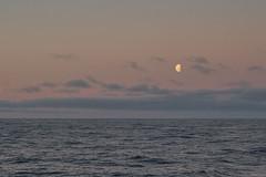 Moonrise, Drake Passage (i-lenticularis) Tags: antarctica moonrise drakepassage