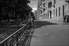 DR150802_0902D (dmitry_ryzhkov) Tags: fence eye eyecontact contact motion movement walk walker walkers pedestrian pedestrians sidewalk woman women lady sony alpha black blackandwhite bw monochrome white bnw blacknwhite bnwstreet day daylight one sun sunlight sunshine sunday sunny shadow shine shadows light lights art city europe russia moscow documentary journalism street streets urban candid life streetlife citylife outdoor outdoors streetscene close scene streetshot image streetphotography candidphotography streetphoto candidphotos streetphotos moment people citizen resident inhabitant person portrait streetportrait candidportrait unposed public