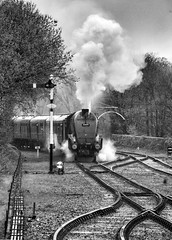 On the right track (JohnN60) Tags: rail railway engineering ramsbottom elr preserved heritage locomotive steam gresley pacific a4 monochrome 60009