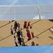 100/365 Queen Elizabeth Olympic Park