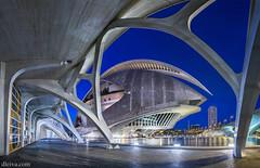 Palacio de las Artes (Valencia) (dleiva) Tags: las house valencia architecture de reina arquitectura opera y sofia ciudad auditorio artes domingo ciencias leiva futurist palaciodelasartes futurista dleiva