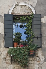 Window Boxes, San Polo District, Venice (Peter Cook UK) Tags: venice window san district boxes polo