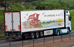Peche Group of Milford Haven Mercedes Actros P33CHE (andyflyer) Tags: truck mercedes lorry trucking blackford a9 haulage actros roadtransport mercedesactros roadhaulage pechegroup p33che pechegroupofmilfordhaven
