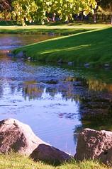 Lush Beauty On A Sunny Day (bigbrowneyez) Tags: park trees light canada nature beauty grass leaves sunshine alberi reflections landscape fantastic rocks shadows dof gorgeous ottawa relaxing scenic sunny natura hills erba serene lush ottawariver fume sunnyday bello andrewhaydenpark acua lushbeautyonasunnyday