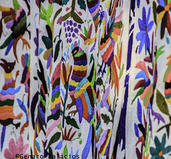 Market at San Jacinto's Plaza (Genaro Palacios Photographer) Tags: travel flowers color tourism animals vertical mexico mexicocity df embroidery striking mx hidalgo hens sanangel workingwomen tenangos saturdaysbazaar sanjacintosplaza tenandodedoria