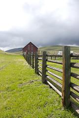 IMG_6505-41.jpg (arbusch) Tags: youth scenic wren prairie 2014 zumwalt zumwaltprairie wallowaresources