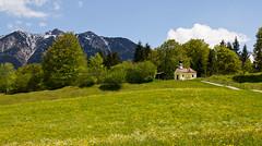 2014 05 19 Krn 025 - Kopie (rosenzweigtoni) Tags: krn marienkapelle