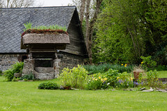 Jardin (Bibou 95) Tags: fleur jardin vert normandie printemps verdure massif puits chaume chaumière veules