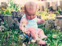 Dandelions (julylamoon) Tags: summer baby outdoors spring wishes dandelionseeds notaweed picmonkey:app=editordandelionbaby