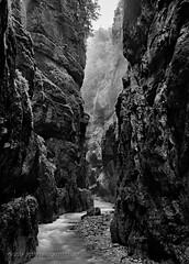 Partnachklamm (Joerg Rockenberger) Tags: longexposure tree nature creek germany landscape bavaria blackwhite rocks gorge garmischpartenkirchen partnachklamm