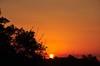 BORA prá cima deles, Brasil!!!! (Ruby Ferreira ®) Tags: sunset pôrdosol notreatment cotiasp silhuetassilhouettes housesdaughter