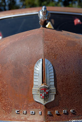 090830_Cadillac315k (c.gennari) Tags: auto car cadillac eldorado oldtimer biarritz vintagecars 1959 kremsmünster cadillacbigmeet christiangennari