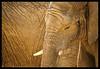 Elephants. (Yvette-) Tags: africanelephants knowsleysafaripark nikond5100