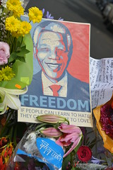 Tribute Nelson Mandela (1918-2013) (99point9) Tags: africa travel flowers blue red color colour colors yellow southafrica freedom nikon nelson tribute johannesburg mandela nelsonmandela 19182013