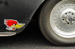 Clay smith (GmanViz) Tags: color detail chevrolet car wheel nikon automobile 1954 fender decal asphalt dents 1953 mrhorsepower gmanviz d7000