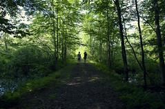 Onward (Megan Colleen) Tags: trees ny nature beautiful rural woods paradise path silhouettes adirondacks lakeside trail