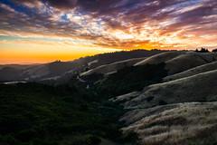 old faithful | woodside, california (elmofoto) Tags: sanfrancisco california sunset landscape nikon colorful cloudy oldfaithful ridge bayarea norcal woodside cloudporn rollinghills d800 2470mm fav250 fav100 fav200 fav300 25000v fav500 nikond800 fav400 fav600 fav700 elmofoto lorenzomontezemolo flickrmarketplace flickrlicensing