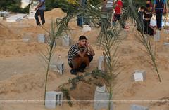 #GazaUnderAttack (#GazaUnderAttack) Tags: muslim eid graves killed relatives offensive israeli pse mourn gazastrip palestinians medics gazacity palestinianterritory fitrfitr