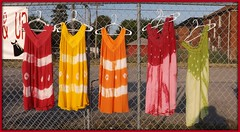 Five Summer Dresses For Sale On Livernois--Detroit MI (pinehurst19475) Tags: street city summer urban color colour fashion fence clothing colorful forsale five michigan detroit clothes dresses colourful summerdress livernois summerclothes dtess livernoisroa