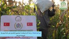 (Alsham Humanitarian Reconstruction Foundation) Tags: foundation humanitarian reconstruction emaar  ataa alsham        wwwemaaralshamcom