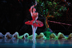 Your Reaction: The Mariinsky Ballet's Firebird/Marguerite and Armand/Concerto DSCH 2014