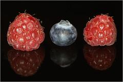 A berry in between berries[Explored] (markfoster999) Tags: explored macromondays inbetween tamron90mmf28spdimacro macro bringbacktwophotos sonya77 sony onblack