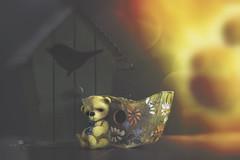 button does not like bokeh (rockinmonique) Tags: button tiny tinybears teddybear miniature birdhouse light bokeh yellow green stilllife moniquew canon canont6s tamron copyright2017moniquew